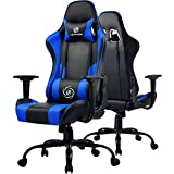 LUCKRACER Gaming Chair Office Chair Swivel Heavy Duty Chair Ergonomic Design with Cushion