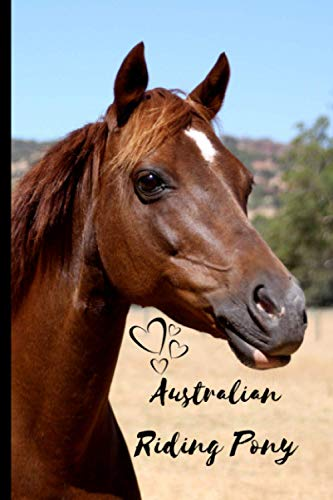 Australian Riding Pony Horse Notebook For Horse Lovers: Composition Notebook 6x9' Blank Lined Journal