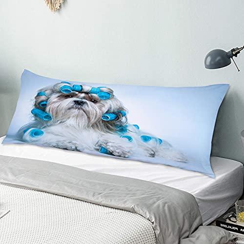 Funda de almohada para el cuerpo Perro Shih Tzu con rulos Aseo Salón de peinado Vista frontal Closeup Foto de estudio Funda de almohada larga de 50 cm x 135 cm, suave y acogedora, lujosa y sedosa