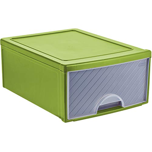 Rotho Frontbox große Schubladenbox 1 Schub, Kunststoff (PP) BPA-frei, transparent/grün, 44,0 x 34,0 x 20,0 cm