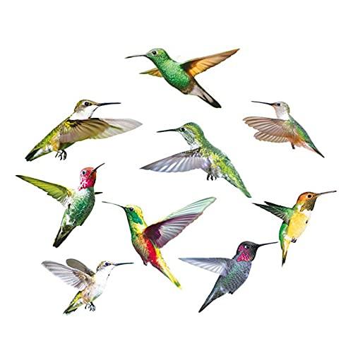 9PCS Hummingbird Calcomanías anticolisión se aferra Ventana, Vinilo decorativo colibrí,extraíble y vívido, para decoración del hogar, cuarto de estar, oficina, baño
