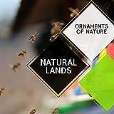 Natural Lands - Ornaments of Nature