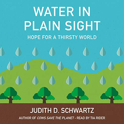 Water in Plain Sight audiobook cover art
