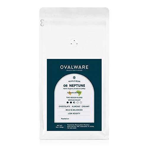 Ovalware 08 Neptune - Cold Brew, Organic Medium Roast Whole Coffee Bean, Colombia and Brazil Blend (08 Neptune, 1lb /...