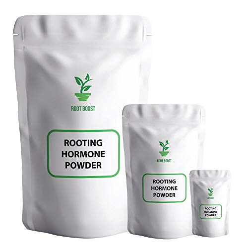 Rooting Powder BOOST Compound Hormone Growth Powder Perfect for Hydroponics & Any Plant Cuttings (100)