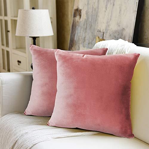 WEYON Juego de 2 Fundas de cojín de Terciopelo Decorativas con Cremallera Oculta Resistente para sofá, Dormitorio o Coche, Terciopelo, Rosa, 40 x 40 cm