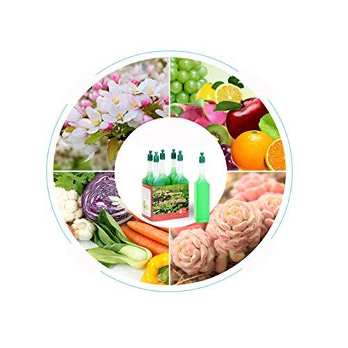 Qianpuren (3 / 6pcs) Flüssiger Pflanzendünger, universelle Hydrokulturpflanze Nährlösung schnelle Erholungswurzel Geeignet für alle Zierpflanzen und Blumen (6)