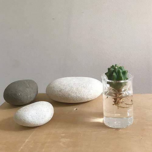 SPICEOFLIFE(スパイス)花瓶水栽培ガラスベースMINIBULBVASEバルブベースクリア7cmKEGY4051