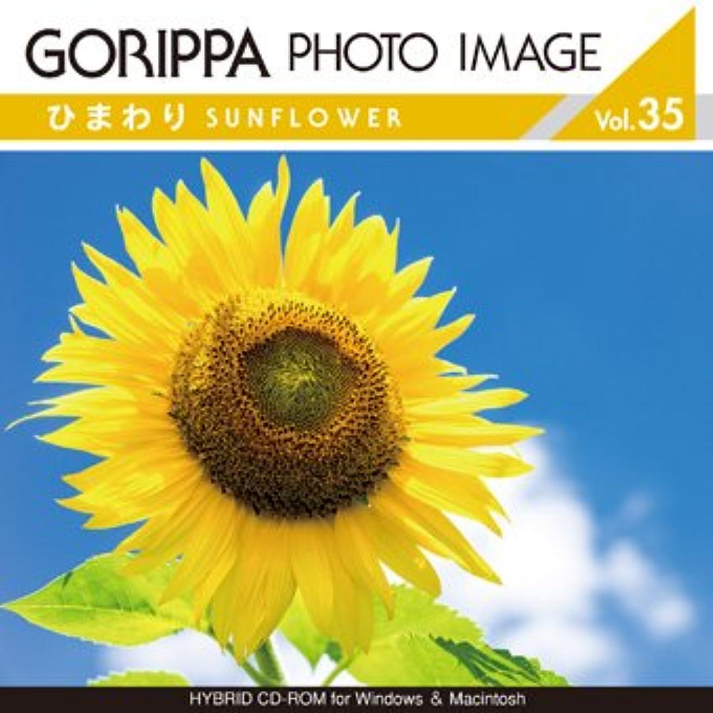 受け入れたシュガー霧GORIPPA PHOTO IMAGE vol.35 ?ひまわり?