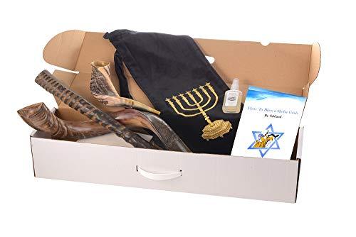 Set of 3 Horn Shofar : Kudu, Oryx, Ram + Bag + spray + Guide + Carrying case