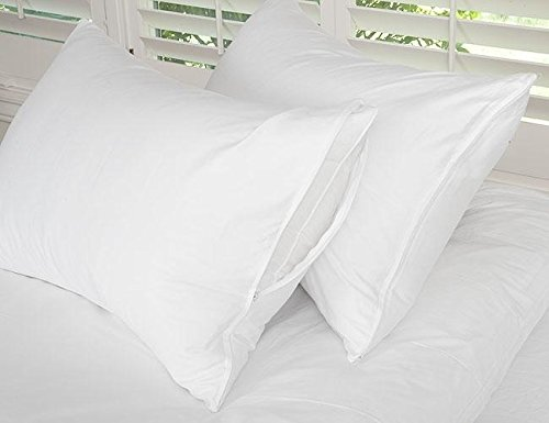 Cotton Zippered Pillow Protector Pair White/European Square