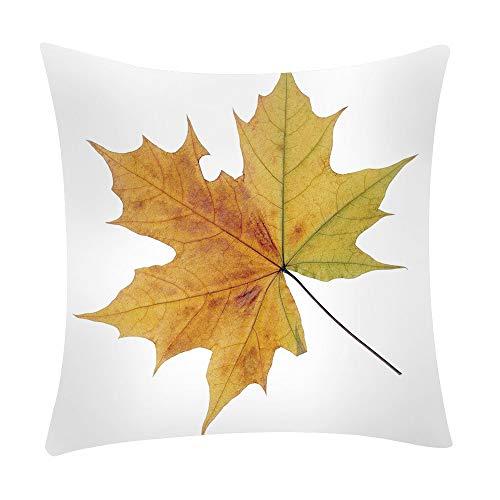 Mamum - Couverture de Coussin de Voiture de Sofa de Polyester de taie d'oreiller Floral d'impression décor à la Maison (D)