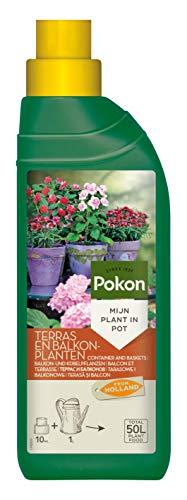 Pokon Balkon- und Kübelpflanzen Flüssigdünger, Qualitäts-Dünger für alle Blühpflanzen auf Balkon und Terrasse, 500 ml