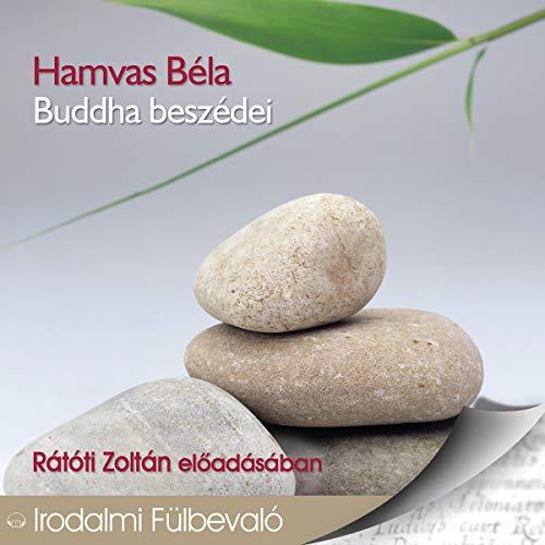 Buddha beszédei audiobook cover art