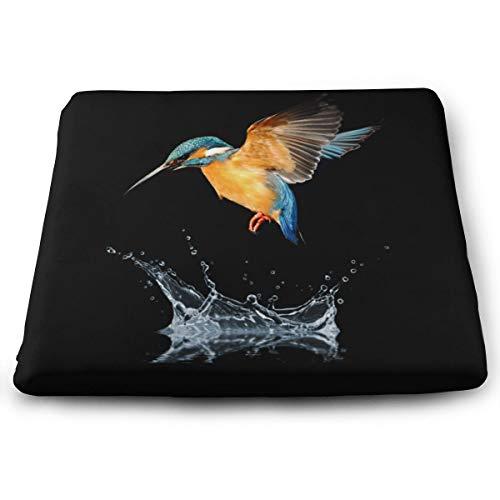 Memory Foam Pad zitkussen. Autostoel Kussens om hoogte te verhogen - bureaustoel Comfort Kussen - Blue Tailed Hummingbird