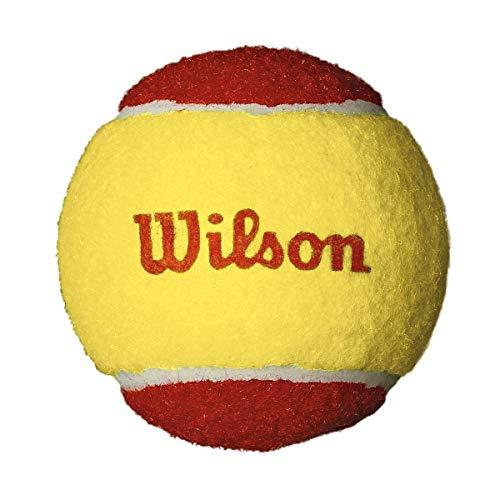 Wilson Starter Red Pelotas de tenis, pack de 12, para niños, amarillo/rojo