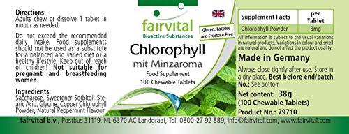 Chlorophyll Kautabletten mit Minzaroma – Großpackung für 100 Tage – VEGAN – 100 Kautabletten - 3