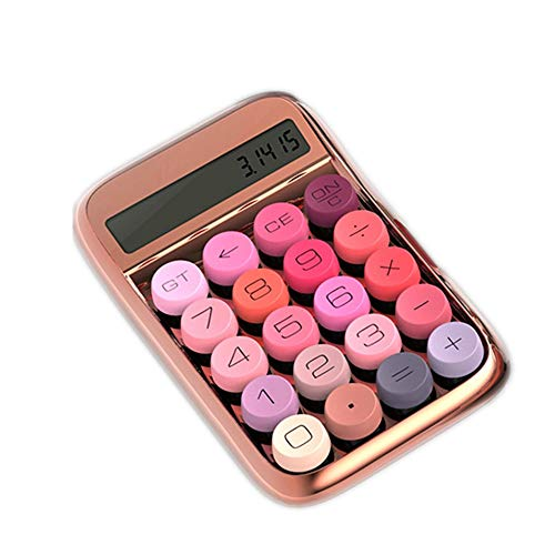 ERTYP Calcolatrice Portatile Portable Computer ABS Materiale calcolatrice finanziaria Accounting Calculator Ufficio Calcolatrice (Color : Pink, Size : 14.8x9.2cm)