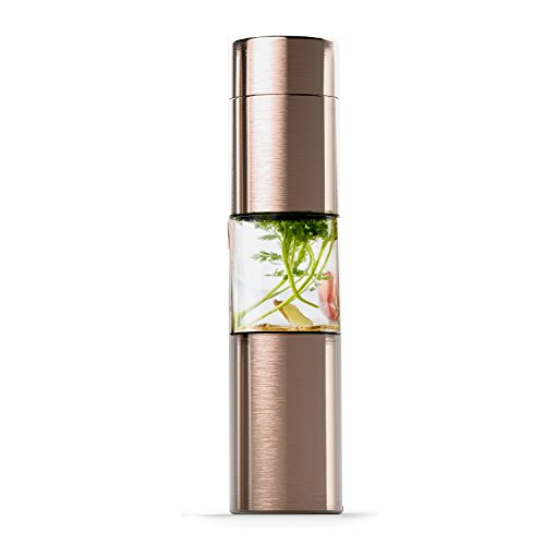 Asobu Flavor U See a Stainless Steel Fruit Infuser Slim and Classy Water Bottle 16 Ounce Bpa Free(Gold)
