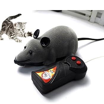 remote control bug prank