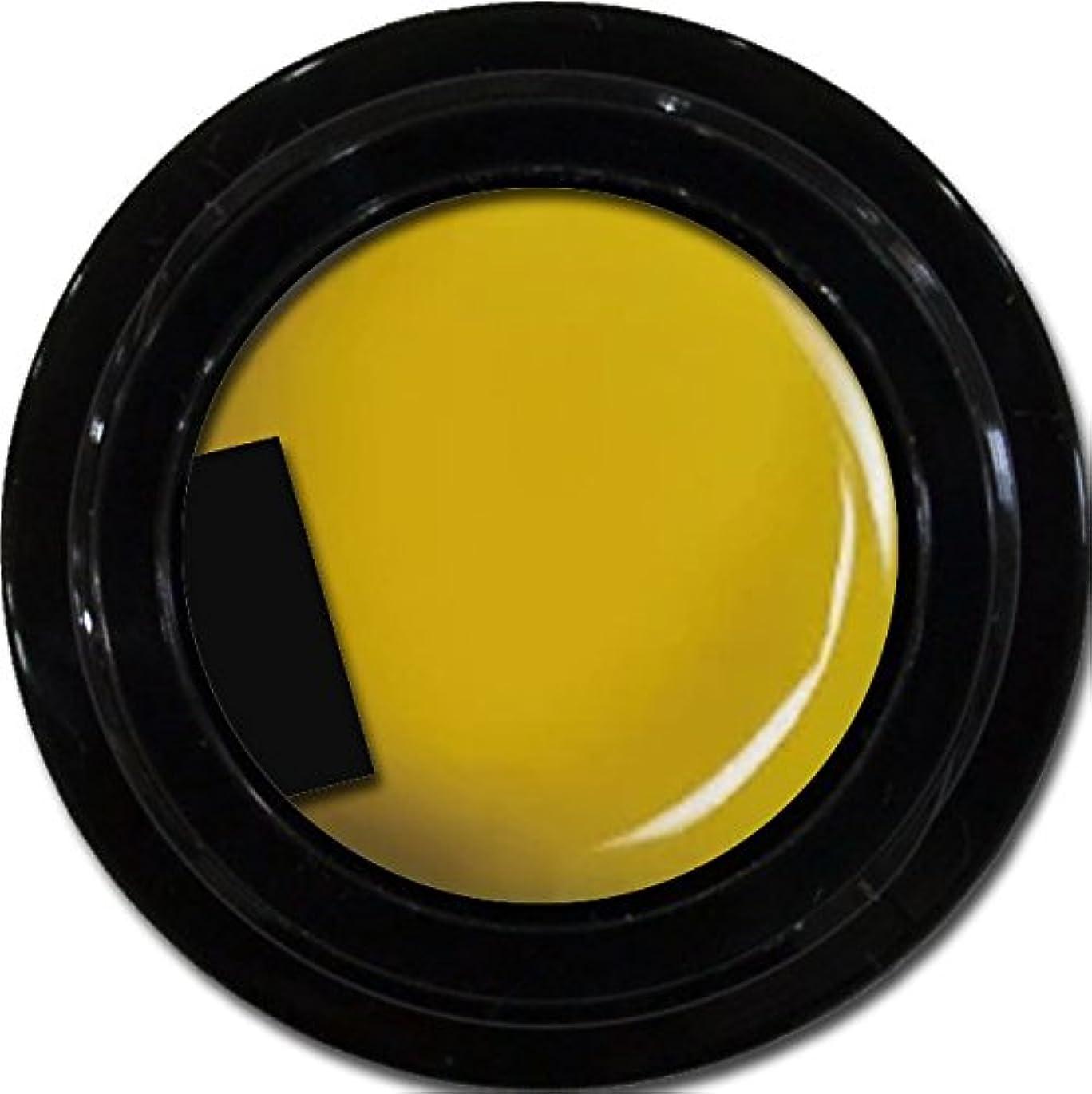 二度重さ赤面カラージェル enchant color gel M604 Mustard 3g/ マットカラージェル M604 マスタード 3グラム