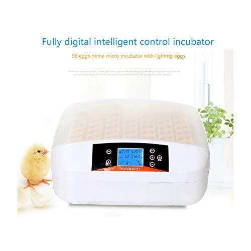 DGYAXIN Incubadora, Incubadora Huevos Gallina 56 Huevos, Digital Inteligente Automáticos con Control de Temperatura, Pollos Patos Aves Codornices,56.3 * 50 * 24cm