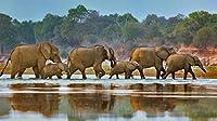 2000個の木製大人のパズル、減圧レ組み立てゲーム、最高のホリデーギフト- 象の群れ(75*105cm)