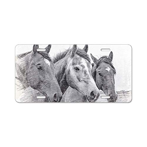 Dressage horse license plate car truck SUV tag black and grey