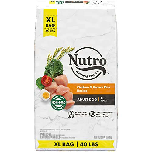 NUTRO NATURAL CHOICE Adult Dry Dog Food, Chicken & Brown Rice Recipe Dog Kibble, 40 lb. Bag