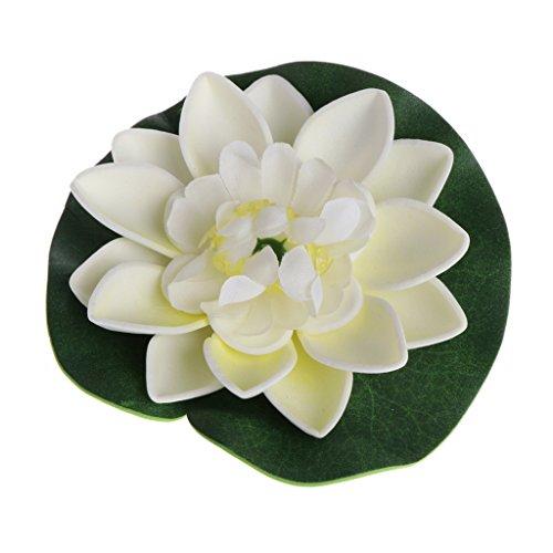 Planta Flor Loto Marca Xuniu