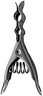 Henry Berry & Dairy Extreme Clothespins - Stainless Steel - 20 Pack