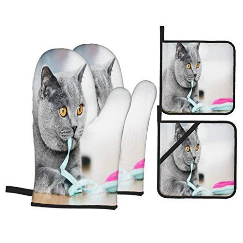 Guante de Horno de 4 Piezas y agarradera,British Shorthair Cat Jugando,Guantes Aptos para Alimentos Antideslizantes Impermeables y Resistentes al Calor para microondas cocinar y Hornear en la Cocina