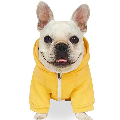 Fashion Pet Dog Cat Hoodies for Small/Medium Dog 2 Legs Pet Clothes Cotton Puppy Winter Sweatshirt Zipper Warm Sweater Coat Jacket (M, Yellow)