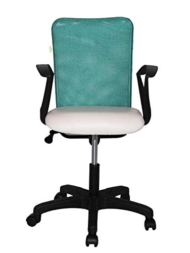 TIMBER CHEESE Aqua Green Ergonomic REVOLVING Chair (with Warranty) (Large, White)