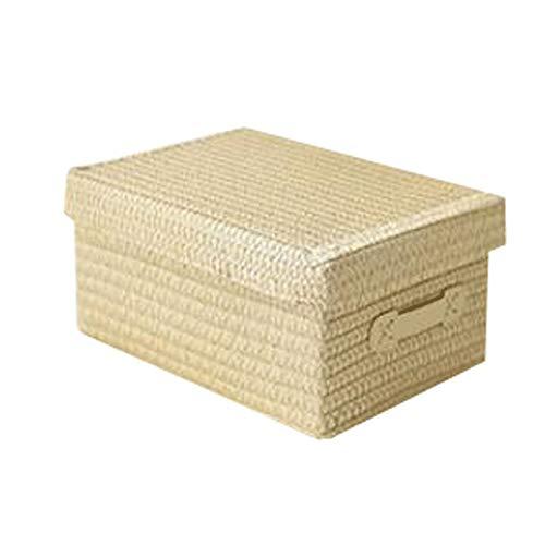 Hanpiyigzwl Contenitori Plastica, Scatola di immagazzinaggio ventilata, scatola di immagazzinaggio in rattan e paglia, cesto di magazzino in tessuto con coperchio, snack, biancheria intima, armadio, r