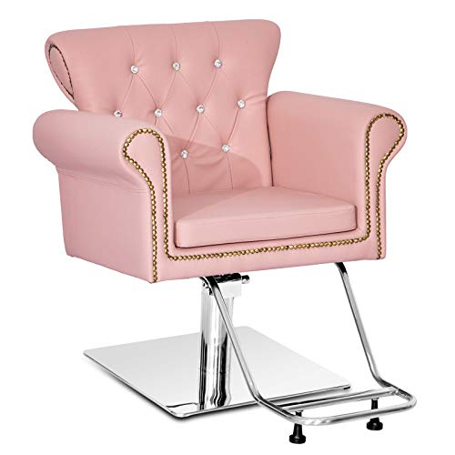 Paddie Salon Chairs for Hair Stylist, Hydraulic Barber Chair Antique Styling Beauty Equipment (Pink)