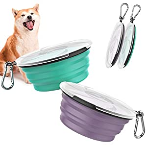 Pawaboo Collapsible Dog Bowls 2 Pack, Silicone Feeding Watering Bowls with Lids & Carabiners for Dogs Cats, Portable Collapsable Water Feeder Food Bowl for Walking Traveling Home Use, VioletTurquoise