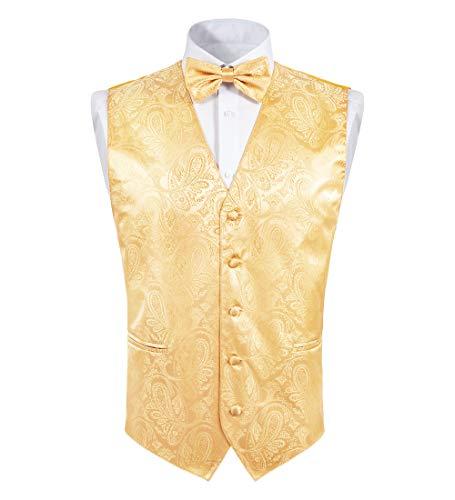 TIE G Men's Paisley Dress Vest + Bow Tie Set for Suit or Tuxedo (Gold Paisley, Large)