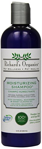 Richard's Organics Moisturizing Shampoo for Dogs – With Oatmeal, Echinacea, Sweet Almond Oil to Soothe and Protect Dry, Itchy, Inflamed Skin – Relief from Insect Bites and Irritations (12oz)