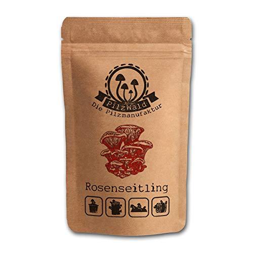PilzWald Rosenseitling züchten - 25 Pilzdübel - Für Stroh & Kaffeesatz - Bacon Pilz Myzel Pilzbrut mit Bilder-Anleitung - Rosenseitlinge Pilzzucht