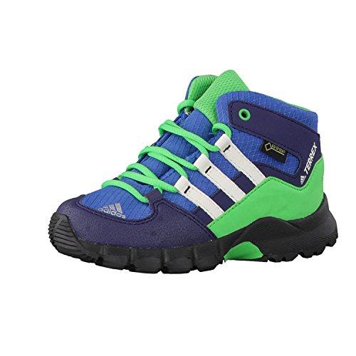 adidas Unisex Kinder Terrex Mid GTX I Stiefel, Corblu Cwhite Enegrn, 21 EU