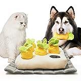 Uroncha Hund Interaktives Spielzeug Schnüffelteppich hundespielzeug Intelligenz schnüffelteppich Hunde