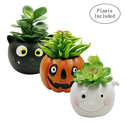 JIUCHEN Kunstpflanze Künstliche Sukkulenten Pflanzen mit Harz Topf - Halloween Deko für Wohnzimmer Küche Büro Tisch-Deko,3er Set