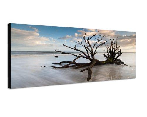 Image sur toile 120 x 40 cm Modèle Panorama Tableaux pour la mur, encadrés, prêts à poser, tout les images sur châssis géant bois véritable.