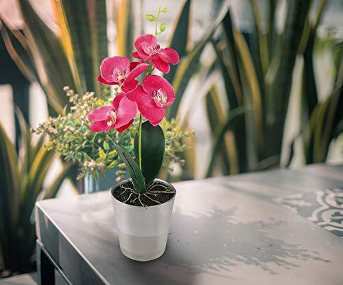 Orquídea artificial con florero de vidrio - Decoración de flores de seda falsa para el hogar / oficina / mesa / jardín / fiesta