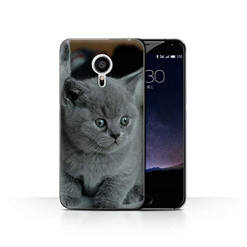 Handy Hülle kompatibel mit Meizu Pro 5 Süß Baby Tier Fotos Graues Kätzchen Katze Transparent Klar Ultra Dünne Handyhülle Hülle Cover