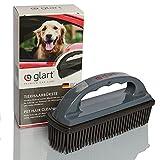 Glart 44THB Cepillo para animales y suciedad de todos los asientos de coche, tapicería, alfombras, Gris (Anthracite)/Negro, 45THB