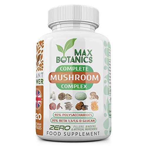 Complete Mushroom Complex | Lion's Mane, Chaga, Cordyceps, Reishi, Shiitake, Maitake, Oyster & Coprinus | High Strength 40% Poly / 20% Beta | No Additives | UK Made (120 Capsule Bottle)