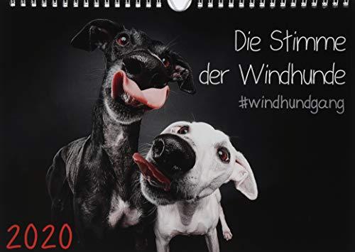 『Gier, M: Stimme der Windhunde (Wandkalender 2020 DIN A4 quer』のトップ画像
