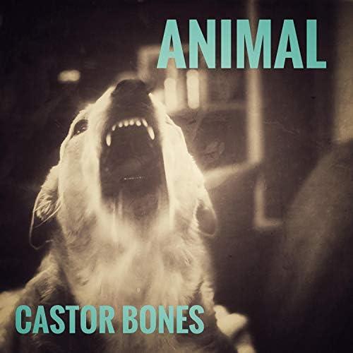 Castor Bones